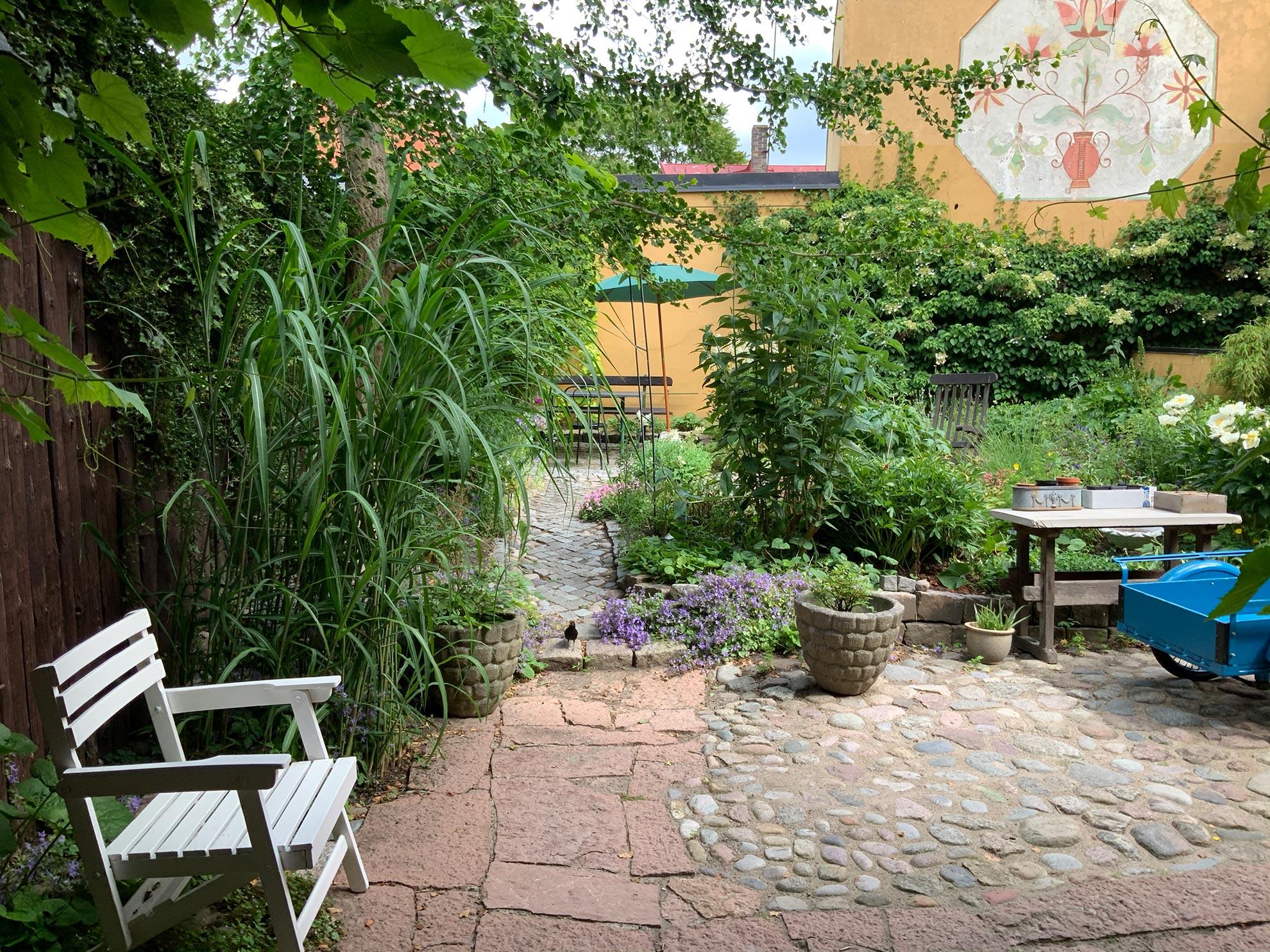 Vädergränd 4 trädgård